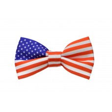 Papion United States Flag